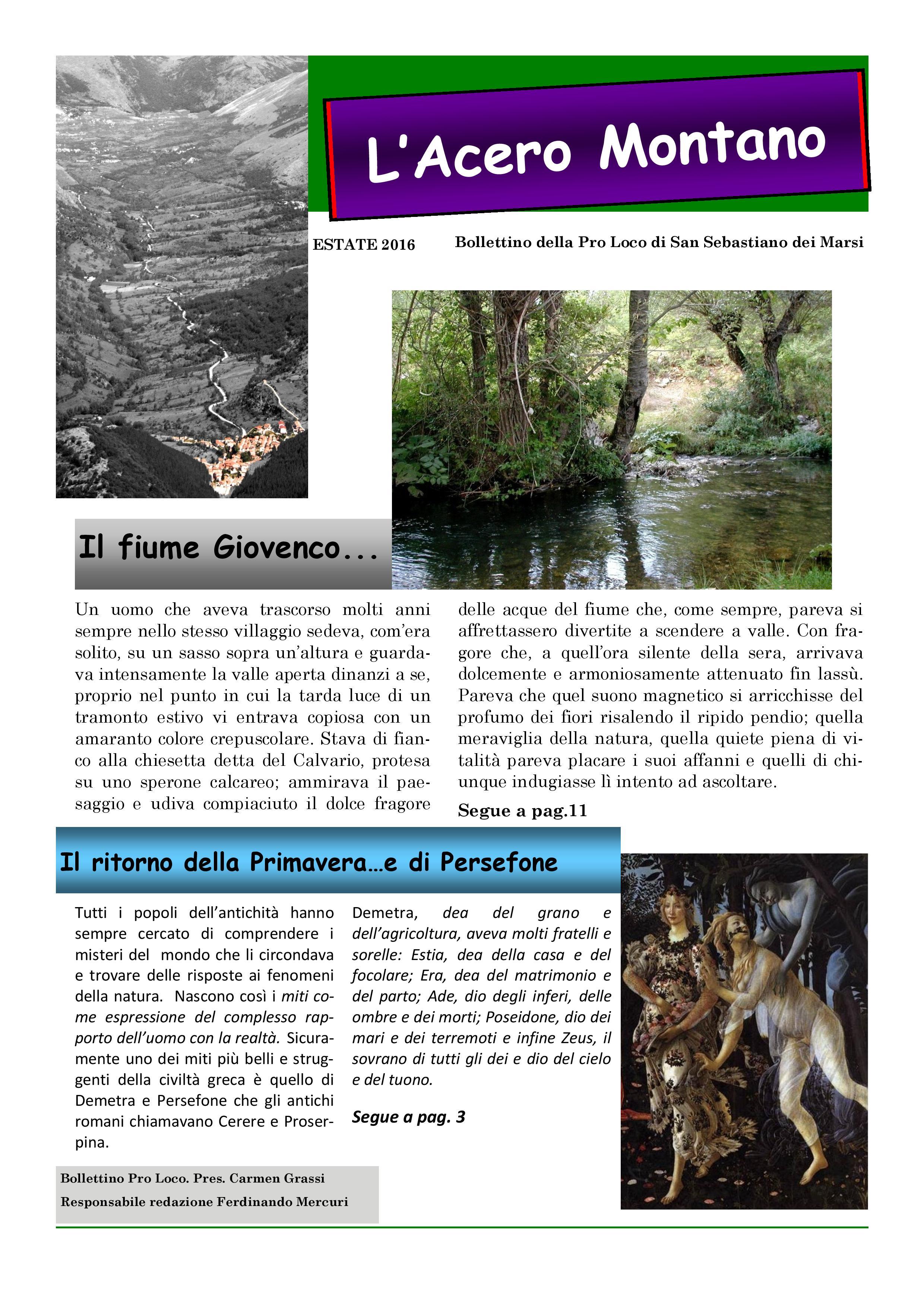Bollettino n. 2 del 2016 Pro Loco di San Sebastiano-page-001