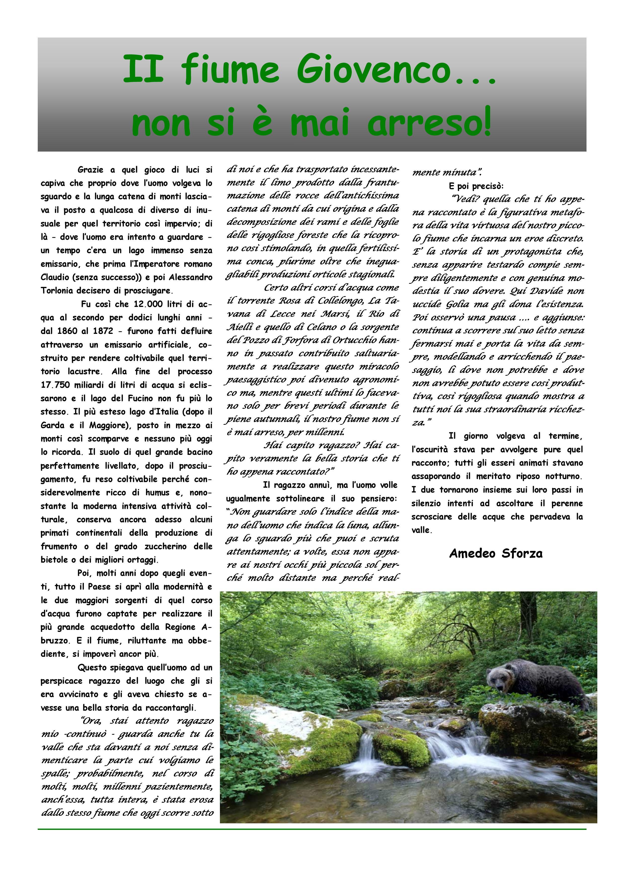 Bollettino n. 2 del 2016 Pro Loco di San Sebastiano-page-011
